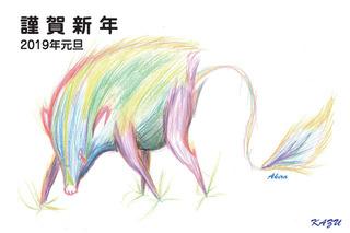 kazumasa_web.jpg
